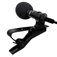 optional mic